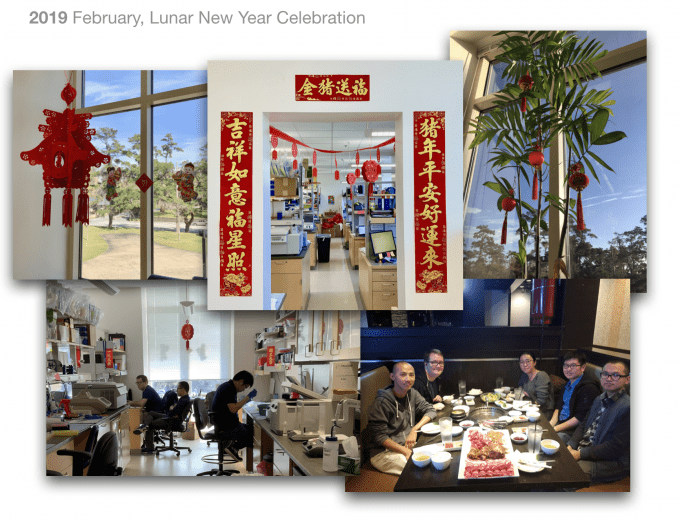 Lab members enjoying our 2019 lunar new year decorations and dinner celebration