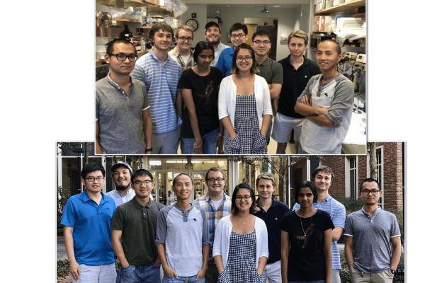 lab picture 2018